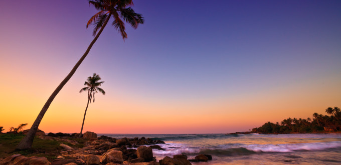 Sunset on Beach with Coconut Trees, Sri Lanka